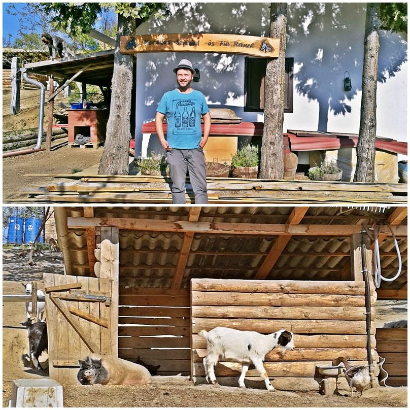 Siófok tavasszal - Kecskés Szilárd és fia állatfarm, Ságvár - Kocsmaturista