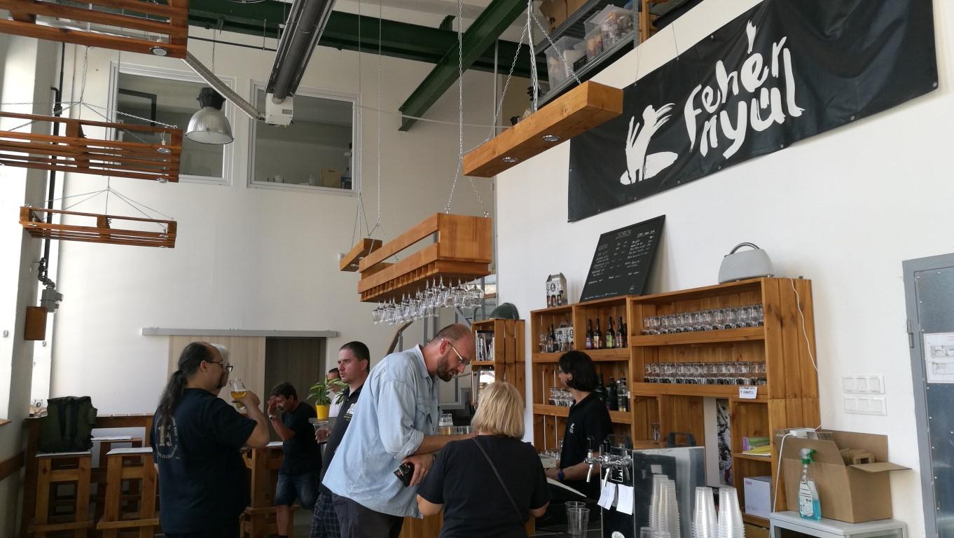 Közös kocsmalátogatások a Magyarországi Sörciikkgyűjtő Klubbal - Fehér Nyúl Brewery Taproom - Kocsmaturista