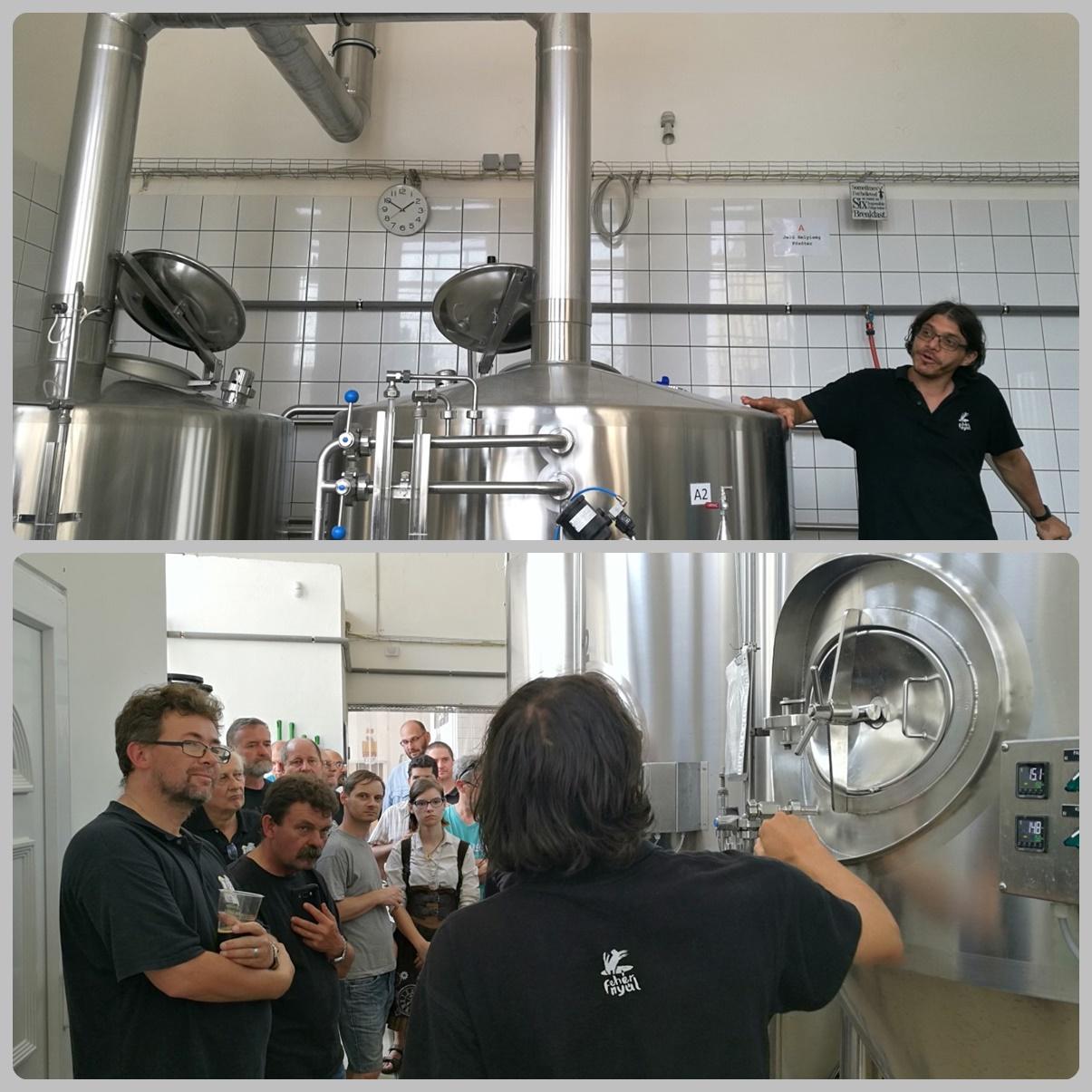 Közös kocsmalátogatások a Magyarországi Sörcikkgyűjtő Klubbal - Fehér Nyúl Brewery főzdelátogatás
