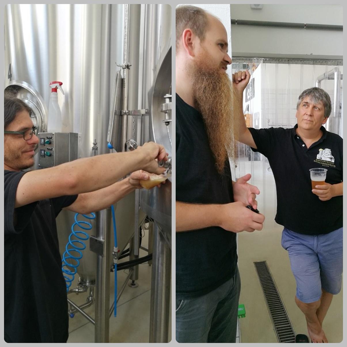 Közös kocsmalátogatások a Magyarországi Sörcikkgyűjtő Klubbal - Fehér Nyúl Brewery - főzdelátogatás és sörkóstolás tartályról - Kocsmaturista